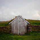 OVERGROWN- Thingvellir national park, iceland  by Andrianne