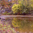 Reflections of Fall, War Eagle Mill River NWA by David  Hughes