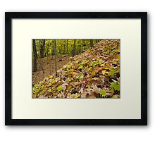 Fall Jubilee Framed Print