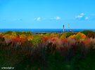 Clear Autumn Sky over Erie by Marcia Rubin