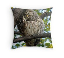 Another Hard Day at the Office Throw Pillow