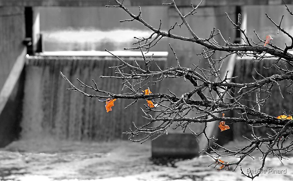 Almost Gone - Manotick Ontario by Debbie Pinard