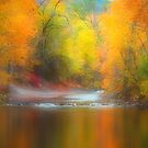 Autumn Burst by Tara  Turner