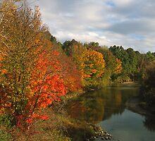 Black River Autumn by Bill Spengler