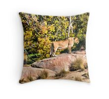 You Don't Sing Me Love Songs Anymore Throw Pillow