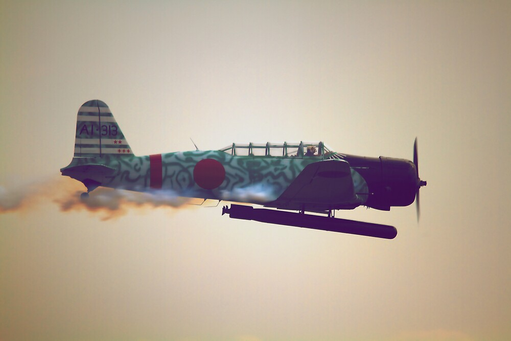 Kamikaze Dreams by Bohicat