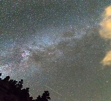 Milky Way Perseid Meteor Shower by Bo Insogna