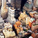 Above New York City by Vivienne Gucwa