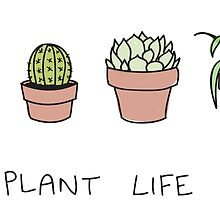Plant Life by Lily Wilkinson
