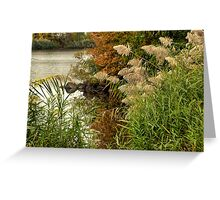 Autumn on the Mystic River Greeting Card