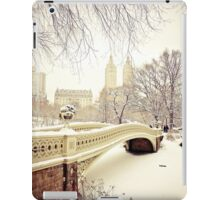 Winter in Central Park iPad Case/Skin
