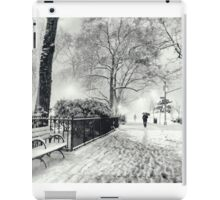 Winter Night - Madison Square Park - New York City iPad Case/Skin