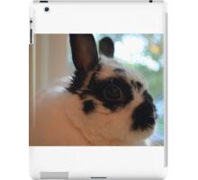 Luchia Bun iPad Case/Skin