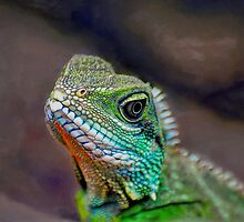 green water dragon by Savannah Gibbs