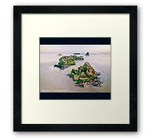Critter Rock Shore Framed Print