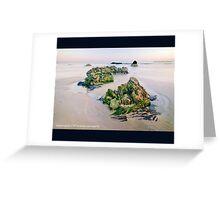 Critter Rock Shore Greeting Card