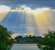 Bestowing sun rays by indiafrank