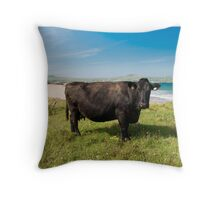 Kerry Cow Throw Pillow