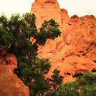 Morning In The Garden Of The Gods by Noble Upchurch