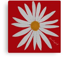 WHITE DAISY RED Canvas Print