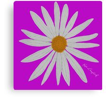 WHITE DAISY PINK Canvas Print