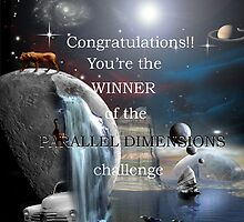 Parallel Dimensions challenge winner banner by retepk