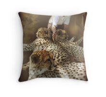 My Cats Throw Pillow