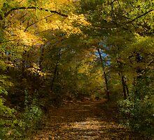Autumn Hideout by Al Duke