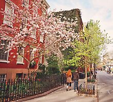 Springtime - West Village - New York City by Vivienne Gucwa
