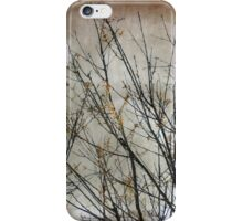 Nature's Abstract iPhone Case/Skin