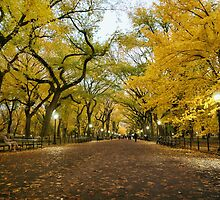 Central Park - Autumn -  Literary Walk - New York City by Vivienne Gucwa