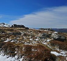 Australian High Country 1 by Colin12