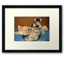 A VIEW TO MAKE YOUR HEART MELT! Framed Print