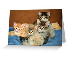 A VIEW TO MAKE YOUR HEART MELT! Greeting Card