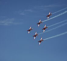 Formation Flying by bsn-photography