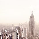 Empire State Building and New York City Skyline by Vivienne Gucwa