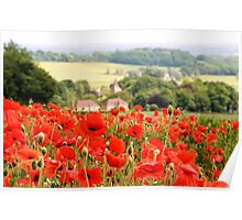 Poppies along the Downs Poster