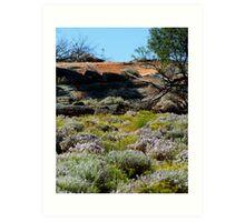 Landscaped by Nature!! ,Kalgoorlie. West Australia Art Print