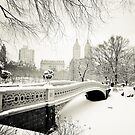 Winter - Central Park - Bow Bridge - New York City by Vivienne Gucwa