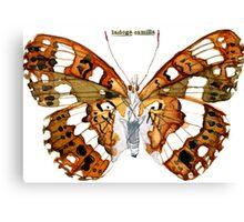 Ladoga Camilla (White Admiral Butterfly) Canvas Print