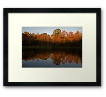 Fading Autumn Light Framed Print
