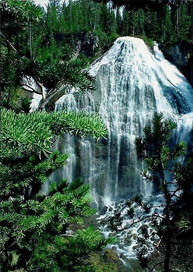 Union Falls by Loree McComb
