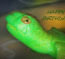 Happy Birthday Turtle by Jonice