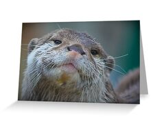 Proud To Be A Otter ! Greeting Card