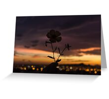 For you. Greeting Card