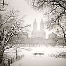 Suspended - Central Park - Winter  by Vivienne Gucwa