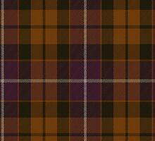 00104 Dutch District Tartan  by Detnecs2013