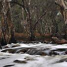 River Crossing. by Dejezza