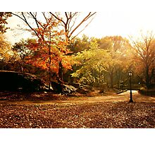 Light Through Autumn Trees - Central Park Photographic Print