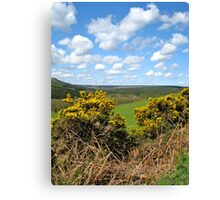 Langdale Forest Canvas Print